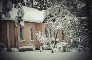 House in Winter Forest by Ann Romanenko