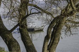 Looking Through by Ann Romanenko