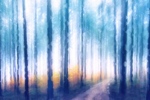 Artistic CVII - Dreamy Forest II by Art Design Works