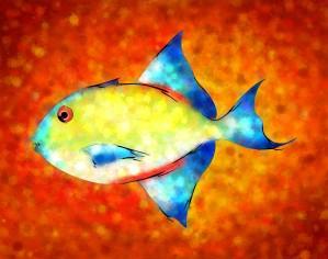 Esperimentoza - gorgeous fish by Cersatti Art