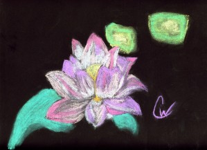 Lotus Flower by Crystal Wacoche