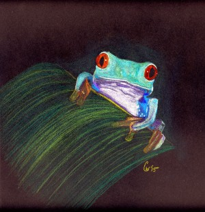 Tree Frog by Crystal Wacoche