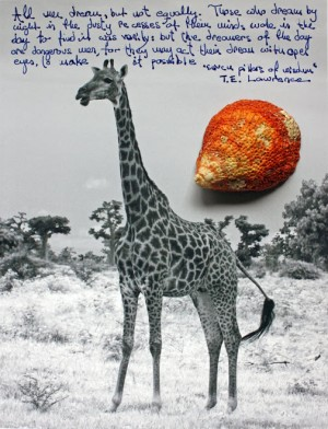 The Giraffe and the Shell Collage by D de G