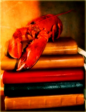 The Lobster Journals by D de G
