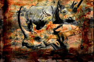 Rhino Impalas Collage by D de G