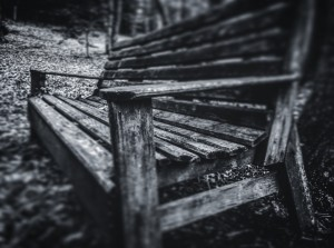 Black and White Bench by DH Photo Concepts