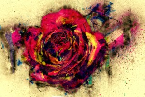 abstract rose by Dagmar Marina