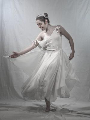Le cygne 7 by Daniel Thibault artiste-photographe