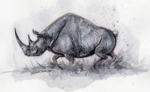 Rhino ink painting by Delaram dehrouyeh