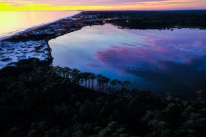 30A Trees Western Lake by Destin30A Drone