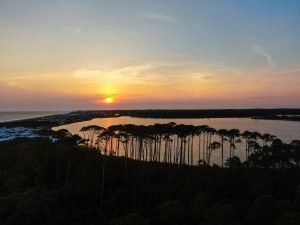 30a Tree Canopy Sunset by Destin30A Drone