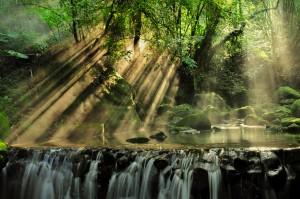 Misty Falls by DroneVue360