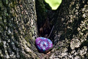 a purple stone on the road 1 2 by Ed Bravo