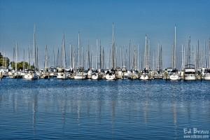 marina st petersburg by Ed Bravo