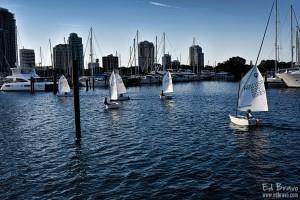 small sailboats by Ed Bravo