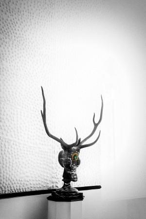 Dark Antlers by Gina Lis