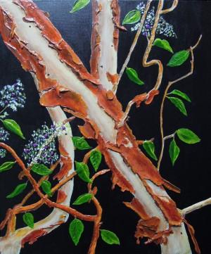Arbutus Tree Bark by Ginny Wilkie