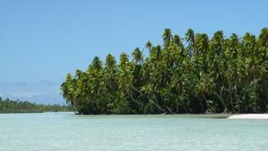 French Polynesia - Rangiroa Blue lagoon middle 4 by GlobetrotterDB