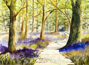 Bluebell Grove  by Wall Art Unlimited