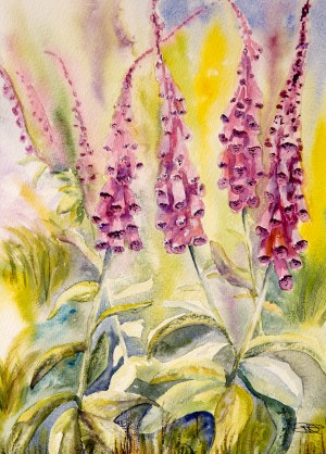 Foxgloves  by Wall Art Unlimited