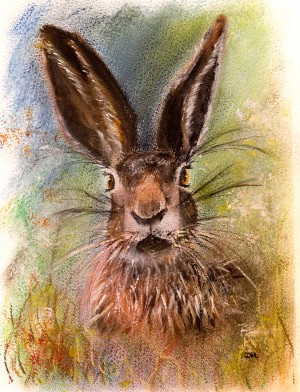 Hare in the Grass  by Wall Art Unlimited