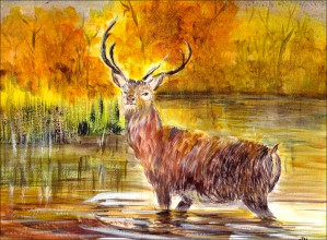 The Stag  by Wall Art Unlimited