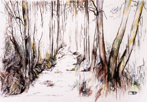 Woodland Stream by Wall Art Unlimited