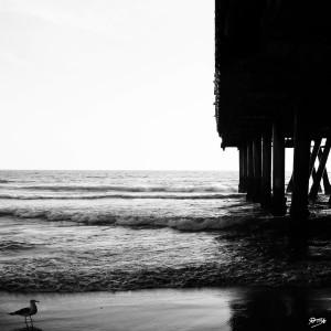 07_ SEA STRUCTURES_DOWN UNDER THE SANTA MONICA PIER VII by Ivan Attila