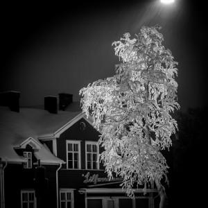 Silverfire by Jonas Sundberg