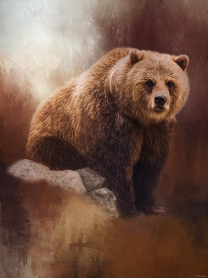 Great Strength - Grizzly Bear Art by Jordan Blackstone by Jordan Blackstone