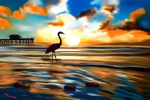 Seabird sunset  by KJHArt