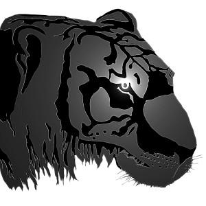 Tiger Head by KJHArt