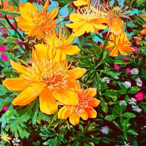 Yellow Flowers by KJHArt