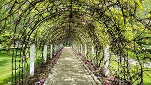 Archway by Laura Castellanos