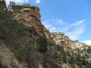 Down the Bright Angel Trail 1 by Laura Jeanne Reck Gayner