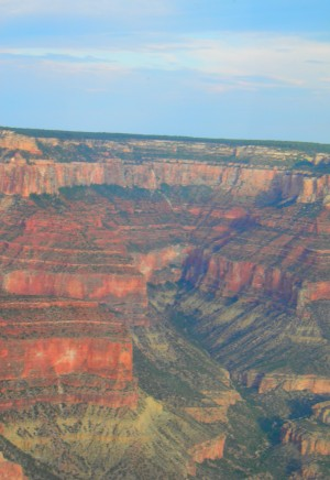 Grand Canyon Aerial by Laura Jeanne Reck Gayner
