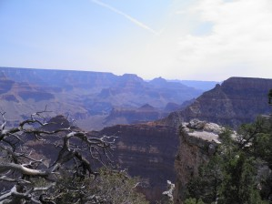 South-rim Trail by Laura Jeanne Reck Gayner