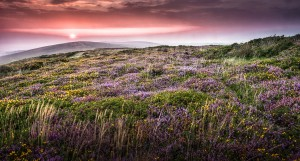Gower sunset at Cefn Bryn by Leighton Collins