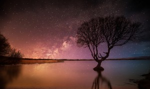 Kenfig Tree by starlight by Leighton Collins