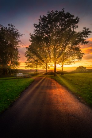 Sunrays at sunset in Ravenhill park by Leighton Collins
