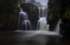 The waterfall at Penllergare Valley Woods by Leighton Collins
