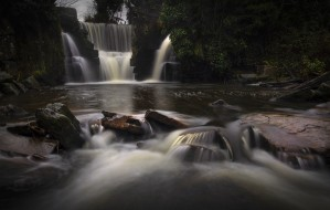 A misty day at the waterfall in Penllergare Valley Woods by Leighton Collins