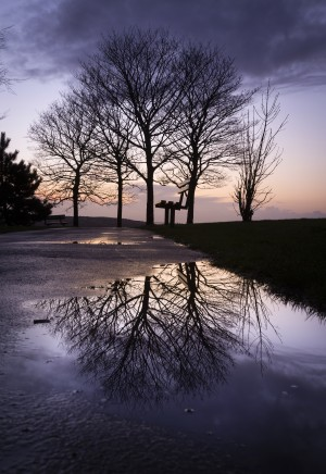 Dusk at Ravenhill park by Leighton Collins