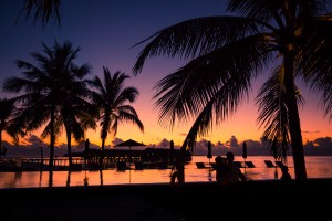 Silhouette coconut palm trees on beach at sunset. Vintage tone by Levente Bodo