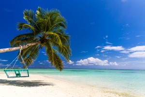 Untouched tropical beach in Maldives by Levente Bodo