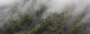Doubtful Sound South Island New Zealand by Madame B