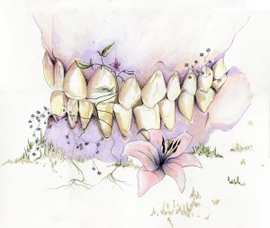 tooth decay by Madeleine Sibthorpe