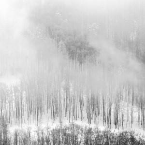 Winter Landscape IV by Marcin Lukaszewicz