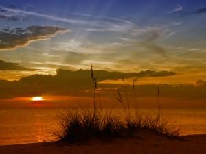 Gorgeous Sunset by Melanie Viola