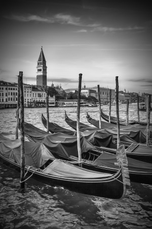 VENICE Grand Canal and St Mark's Campanile black and white by Melanie Viola